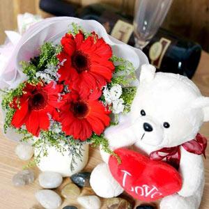 Singapore Flower on Florist   3 Red Gerbera   White Teddy Bear   3 Red Gerberas