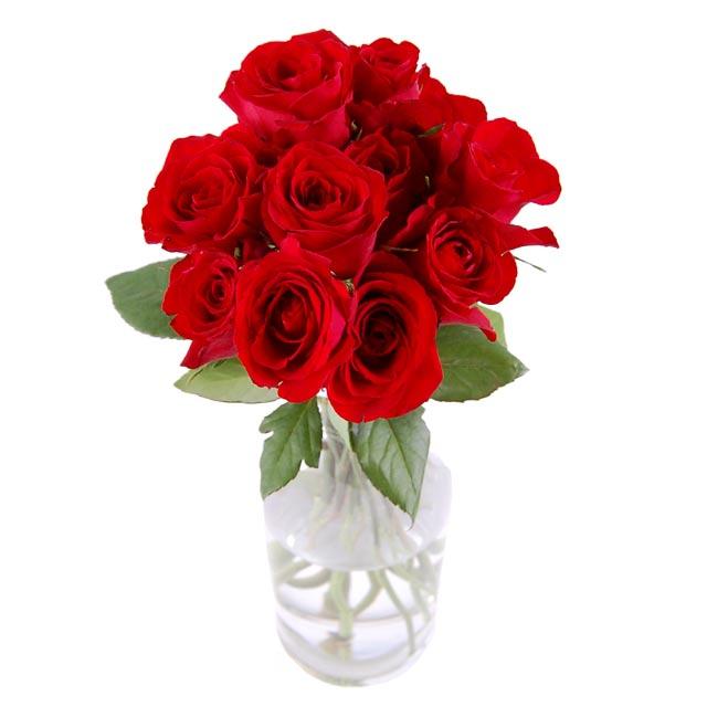 http://www.streetdirectory.com/img/florist/fq/dozen_red_roses_RJ1580_enlarge.jpg