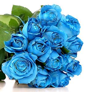 Florists Florists Delivery Amp Florist Shop