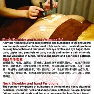 Neck Shoulder and hand Wellness Set