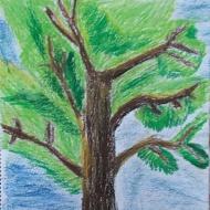 Glendan, Montage II (Age 8-9+) (1)