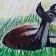 Glendan, Montage II (Age 8-9+) (7)