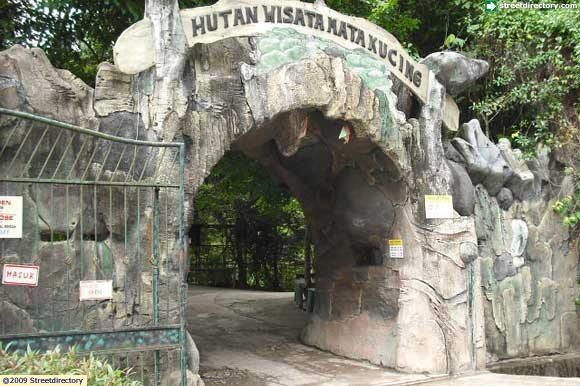 Jakarta Guide Jakarta Images Of Hutan Wisata Mata Kucing