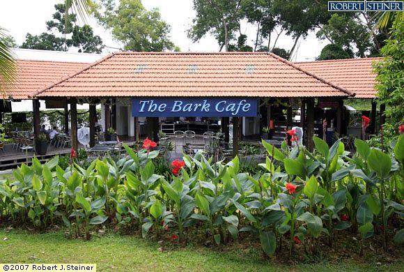 thebarkcafe