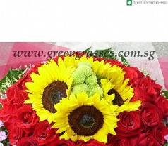 Green Grasses Gift & Flower Photos
