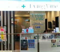 L'ving Vine Dental Clinic Pte Ltd Photos