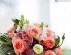 Azalea Floral Photos
