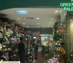 Green Palette Photos