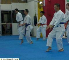 International Okinawan Goju-Ryu Karate-do Federation Photos