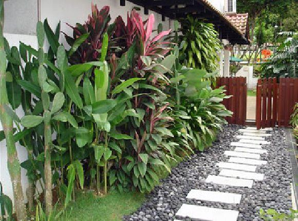 Corona Florist & Nursery Pte Ltd (Corona Florist & Nursery)