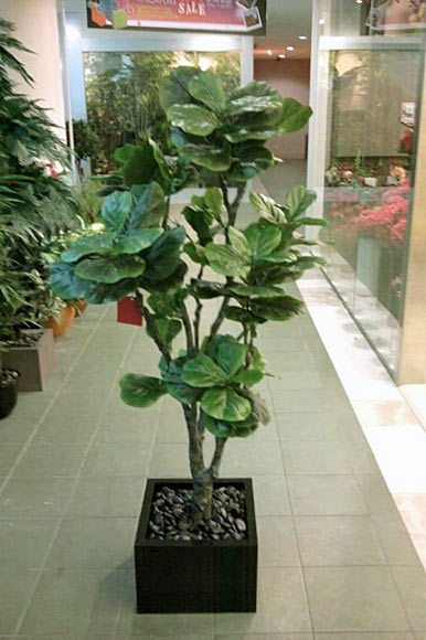 Artificial Plant (looks very realistic) Tree of Prosperity abt 153 cm tall,