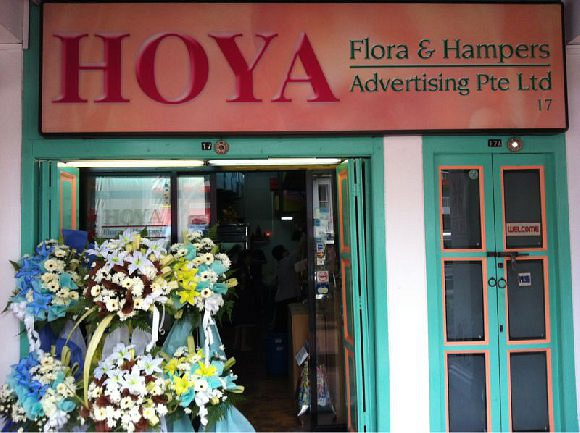 Hoya Flora & Hampers (Neil Road)