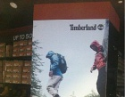 Timberland Photos