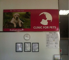 Clinic For Pets Photos