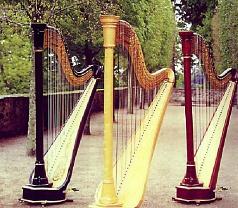 Rave Harps Photos