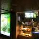 Jollibean Foods Pte Ltd (The Arcade)