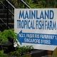 mainland Tropical Fish farm