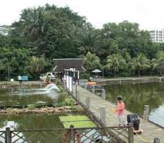 Fishing Paradise Photos