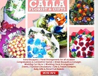Calla Florist & Gifts Photos