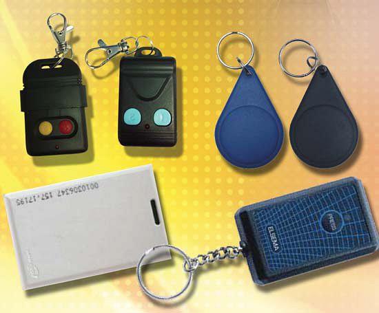 Newton Auto Keys
