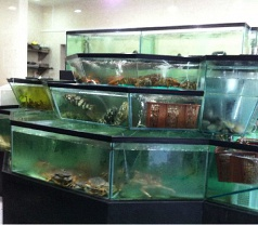 Chin Huat Live Seafood Pte Ltd Photos