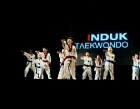 Induk Taekwondo Photos