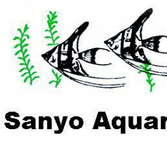 Sanyo Aquarium Pte Ltd Photos