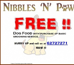 Nibbles N Paws Pte Ltd Photos