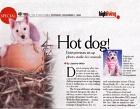 Hotdog Pte Ltd Photos