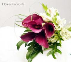 Flower Paradise Photos