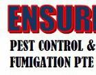 Ensure Pest Control & Fumigation Pte Ltd Photos