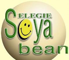 Selegie Soyabean Pte Ltd Photos