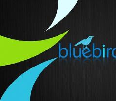 Bluebird Hub Pte Ltd Photos