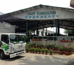 Candy Floriculture Pte Ltd Photos