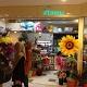 Astoria Floral Design & Landscape Pte Ltd (Thomson Medical Centre)