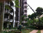Penta Landscape Pte Ltd Photos