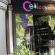 Cellarbration Pte Ltd (Boat Quay Shop Houses)