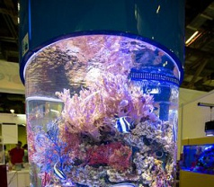 Reef Systems & Services Pte Ltd Photos