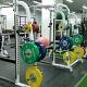 Genesis Gym
