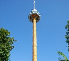 Tiger Sky Tower Photos