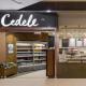 Cedele Shop