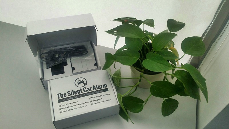 The Silent Car Alarm