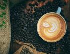 Santino Coffee Specialists Pte Ltd Photos