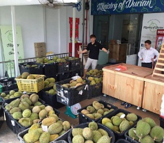 Ministry of Durian Photos