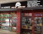 Pets' Gantry Photos