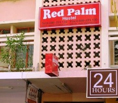 Red Palm Photos