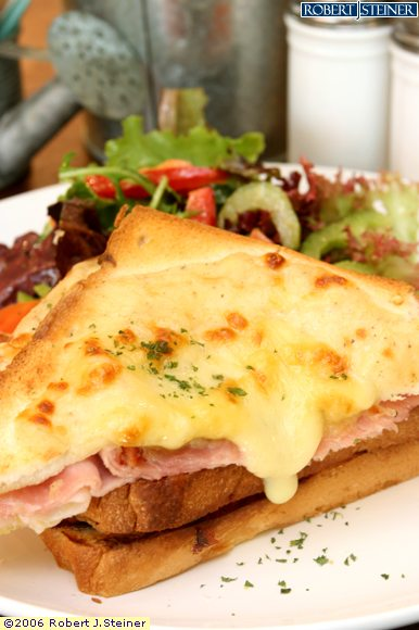 le croque monsieur toasted ham cheese sandwich with. Black Bedroom Furniture Sets. Home Design Ideas