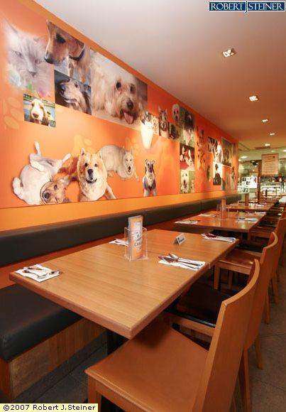 Big o restaurant interior