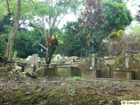 Bukit Brown Cemetery (Abandoned Chinese Cemetery)