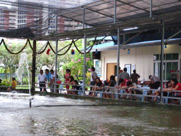 main view of mainland tropical fish farm building image